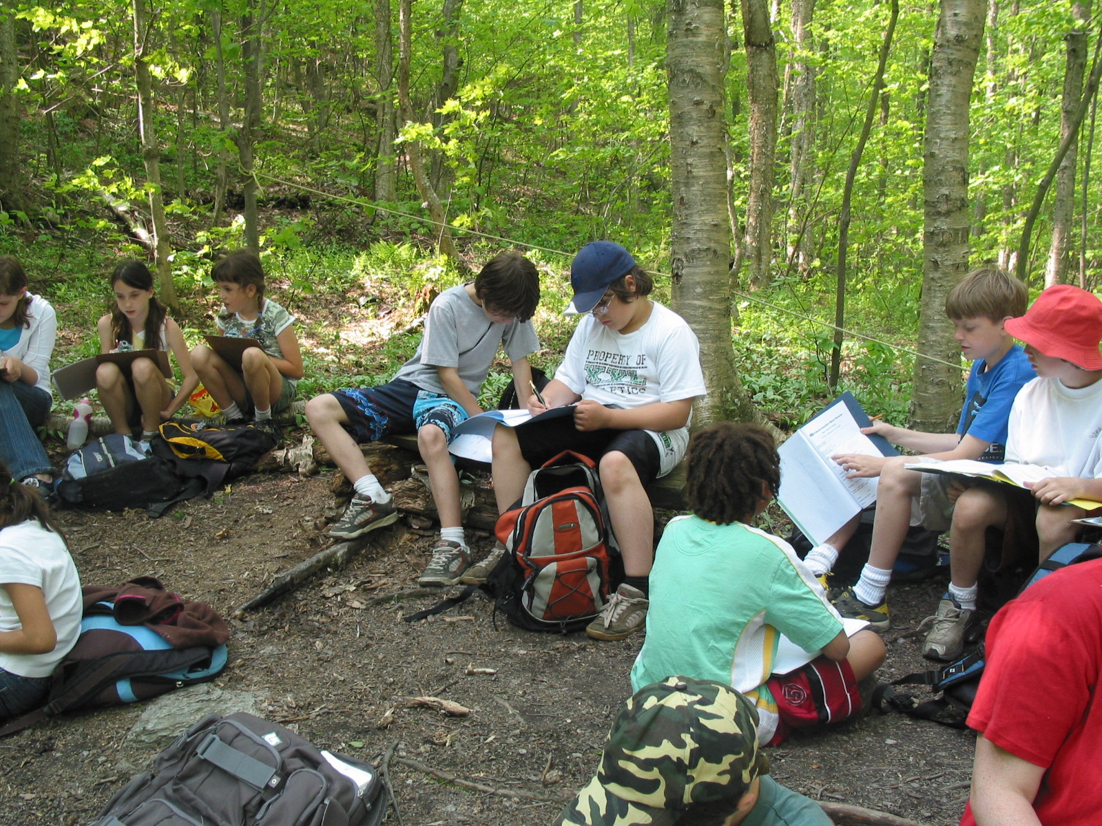 Kids working on project in woods
